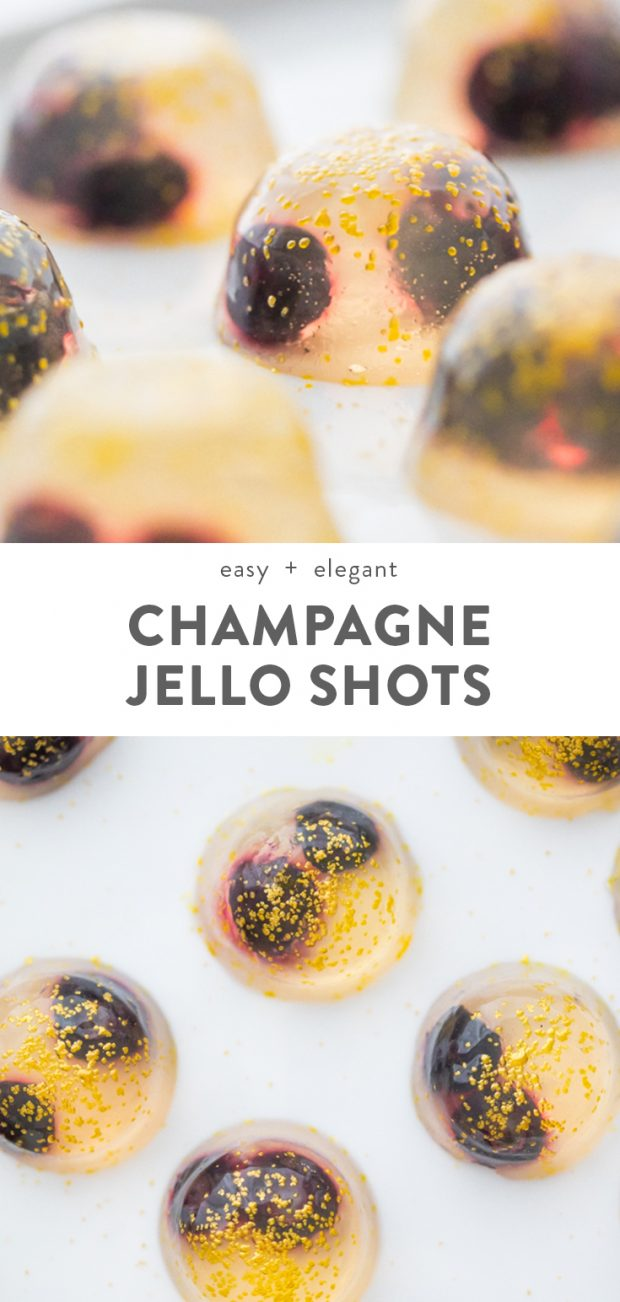 Champagne Jello Shots with Blueberries Pinterest image