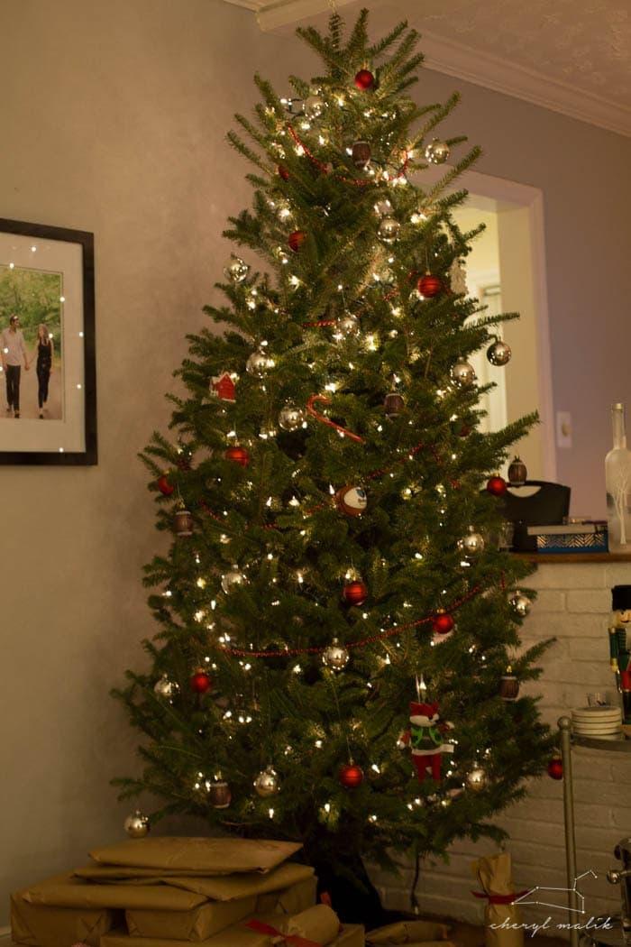christmas-2014-4