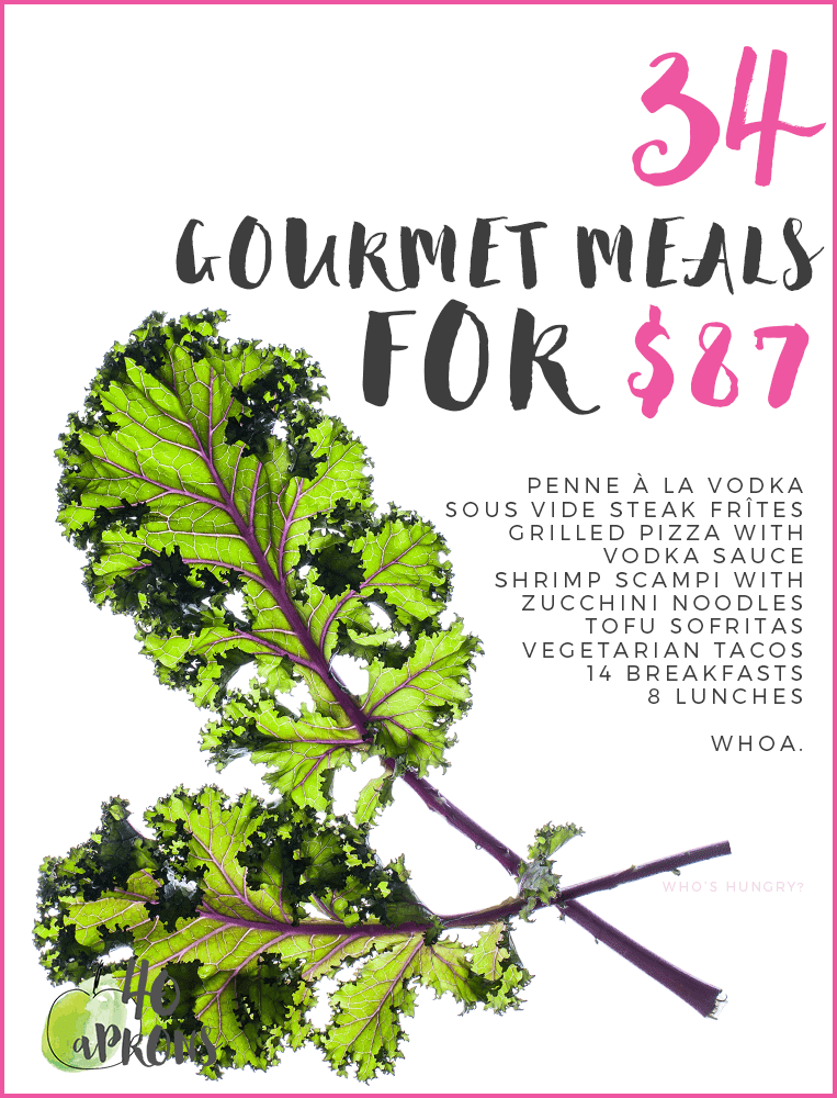 Gourmet Meal Plan: 34 Meals for $87!