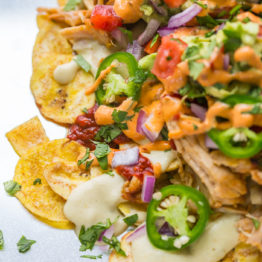 Epic Paleo Nachos with Carnitas (Dairy-Free, Gluten-Free, Vegan Option)