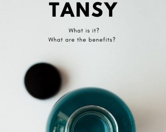 All About Blue Tansy Blog Graphic