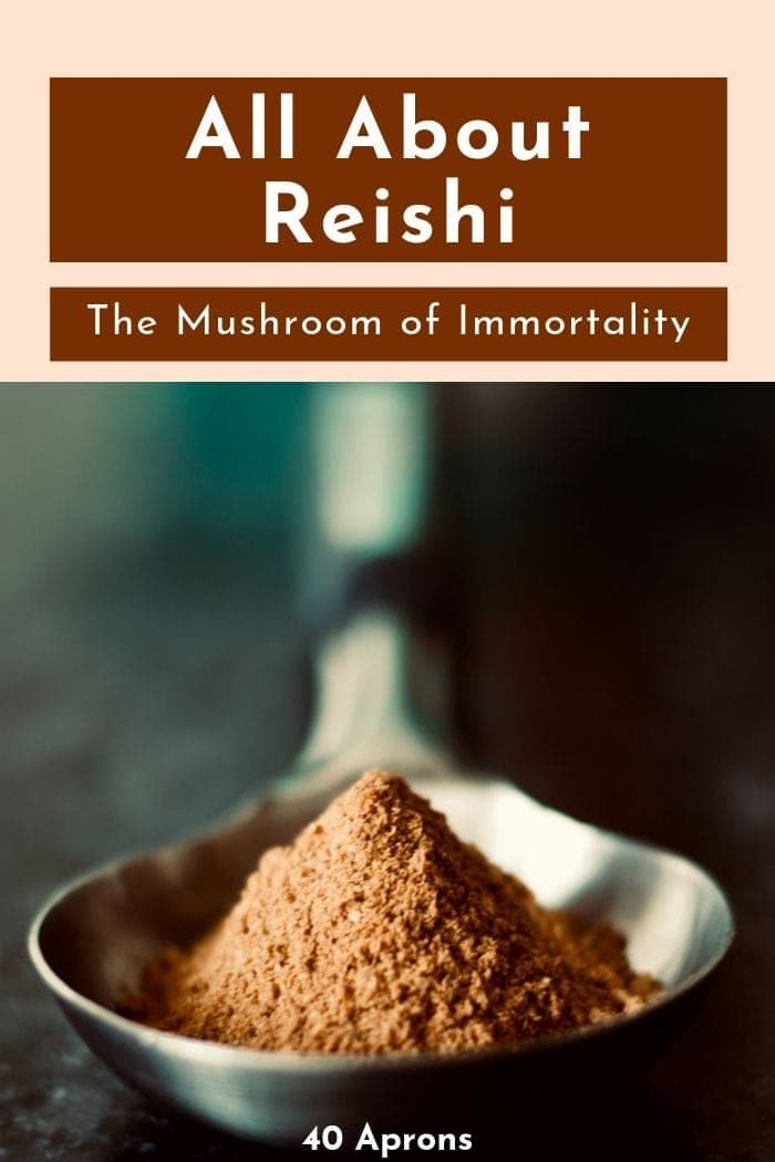 "blog graphic depicting red reishi mushroom powder on a silver spoon with a text overlay saying ""all about reishi"""