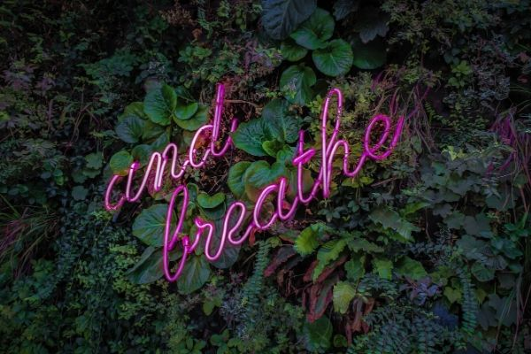 "a pink neon sign with the flashing words ""and breathe"" against a wall of green jungle plants"