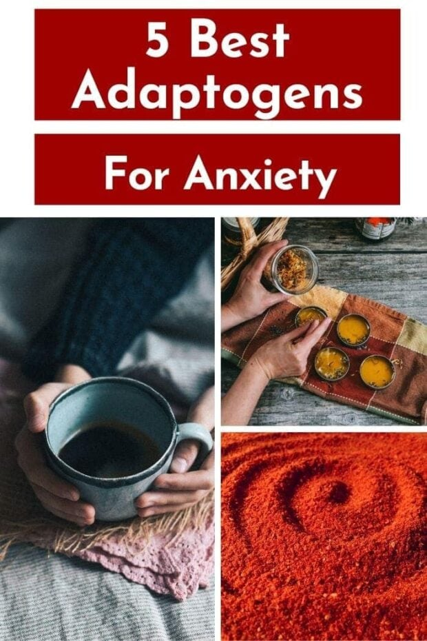 Try these 5 Best Adaptogens for Anxiety along with recommended adaptogenic herb blends to relieve anxiety and help your body cope with acute stress. These 5 non-toxic herbs and plants can take you from living in a constant state of fight or flight to feeling stronger, more stable and more in control of your body and mind. #adaptogens #anxiety #mentalhealth #anxietyrelief #holistichealth