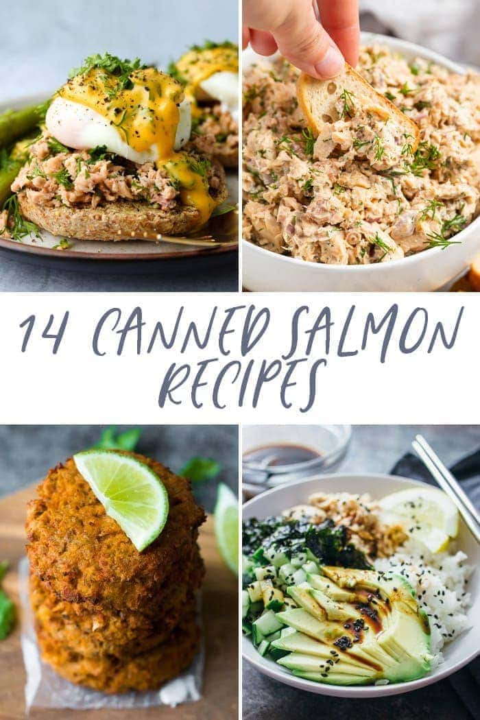 14 canned salmon recipes