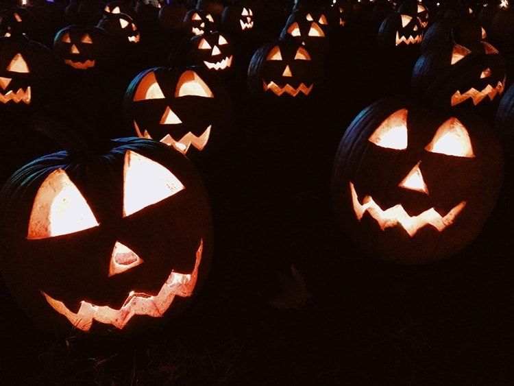Lit up jack-o-lanterns in the night for a safe Halloween