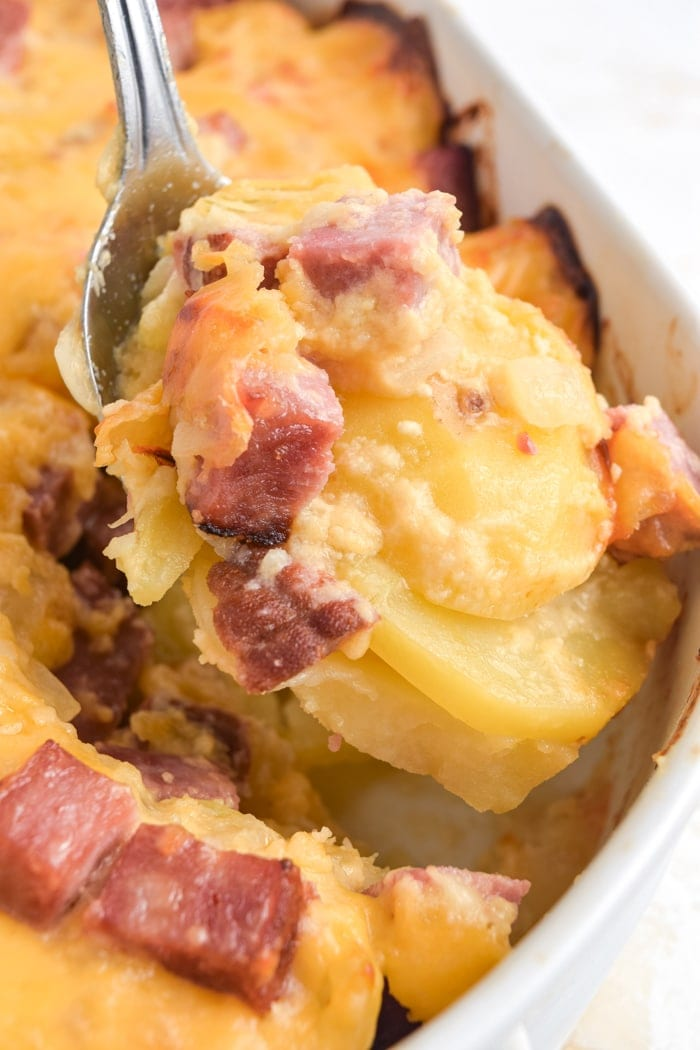 One serving of cheesy ham and potato casserole being spooned out of the casserole dish