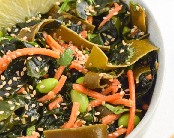 Seaweed Salad Close-Up