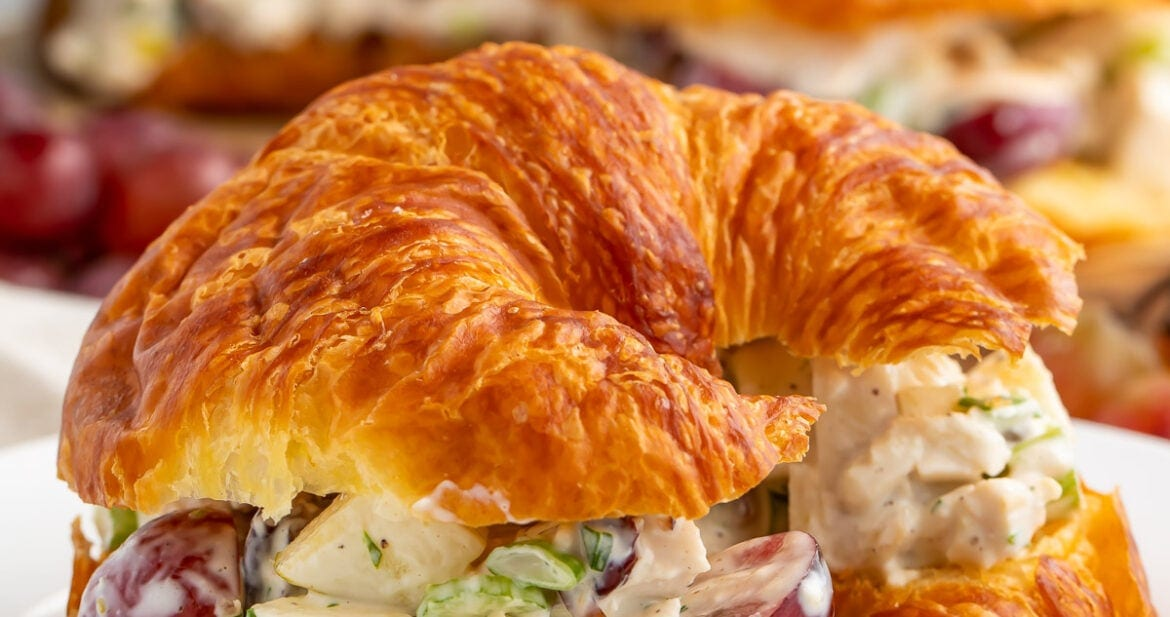 Chicken salad with grapes on a buttered croissant