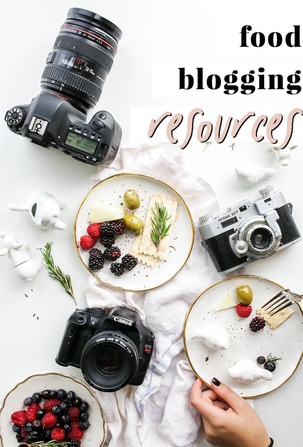 Graphic for food blogging resources
