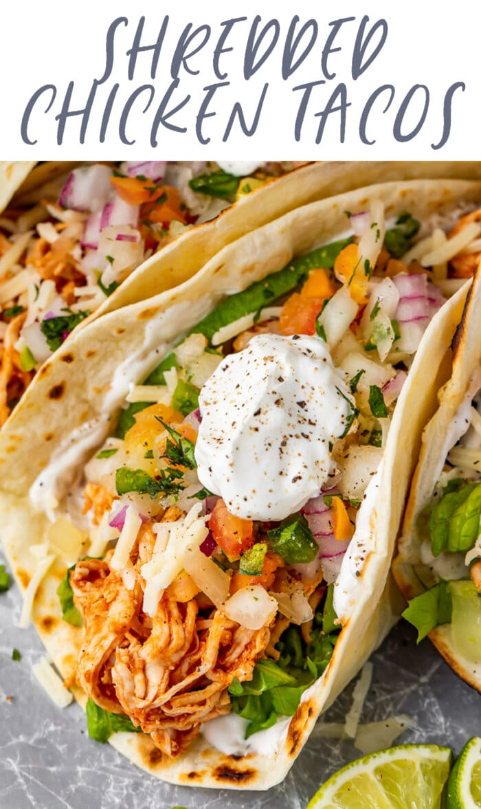 Pin graphic for shredded chicken tacos