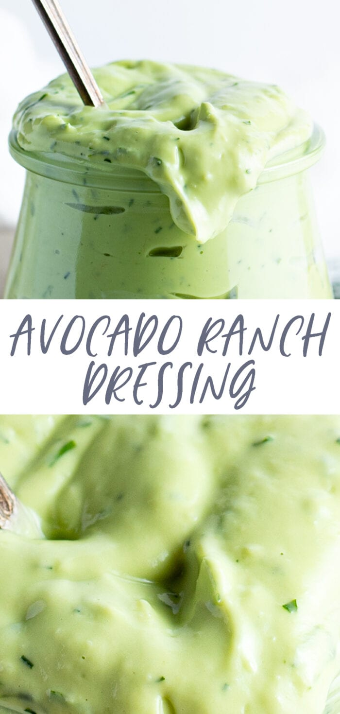 Pin graphic for avocado ranch dressing