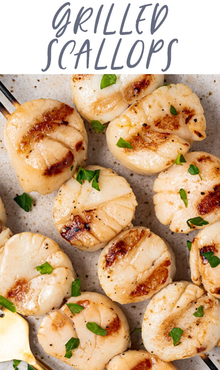 Pin graphic for grilled scallops