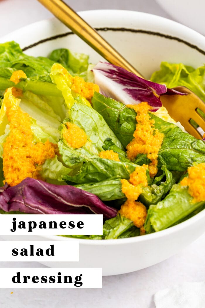 Pin graphic for Japanese salad dressing