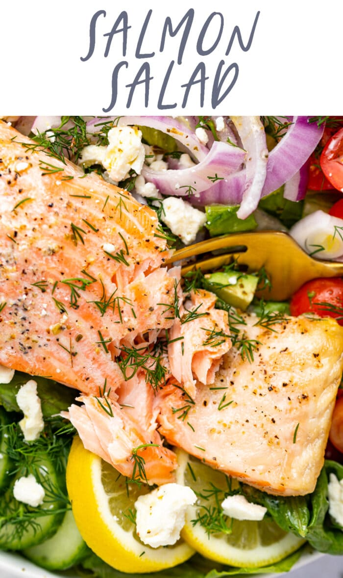 Pin graphic for salmon salad