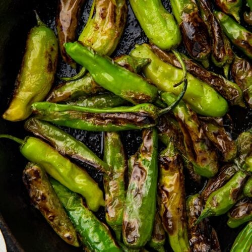 Blistered shishito peppers in a large cast iron skillet