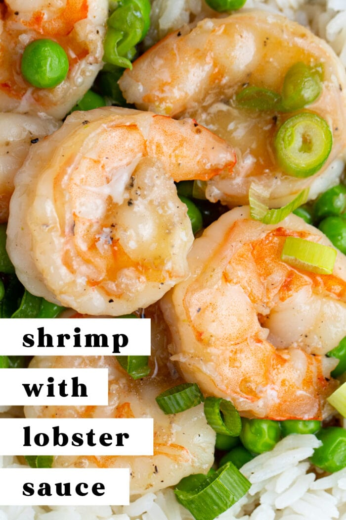 Pin graphic for shrimp with lobster sauce