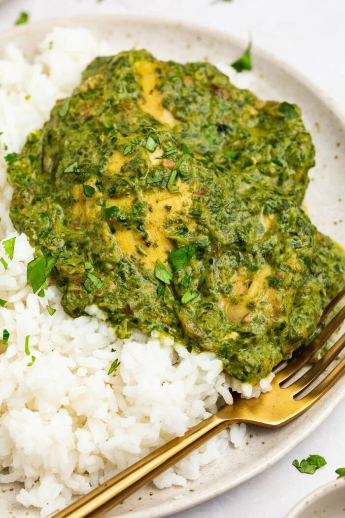 chicken saag on a plate with rice and a fork