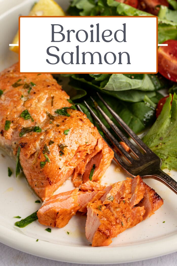 Pin graphic for broiled salmon