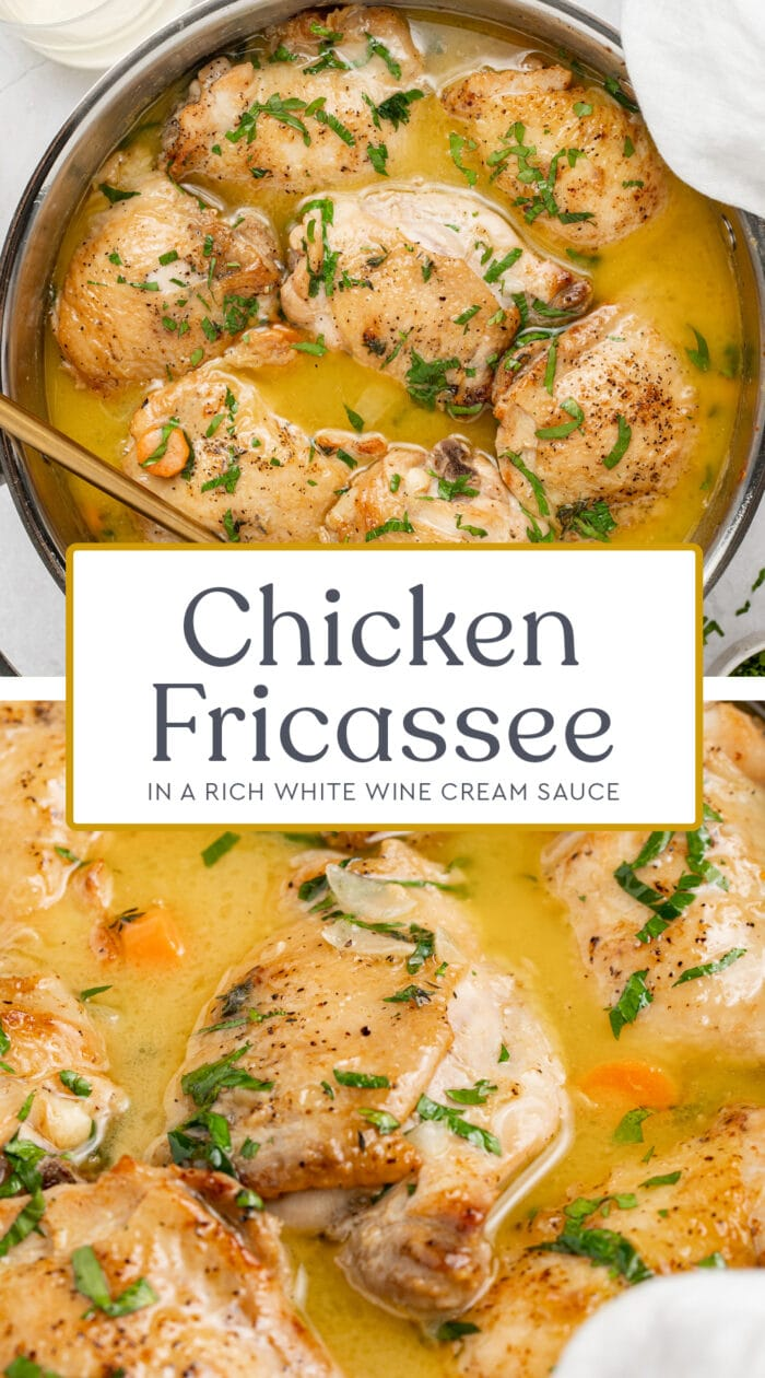 Pin graphic for chicken fricassee