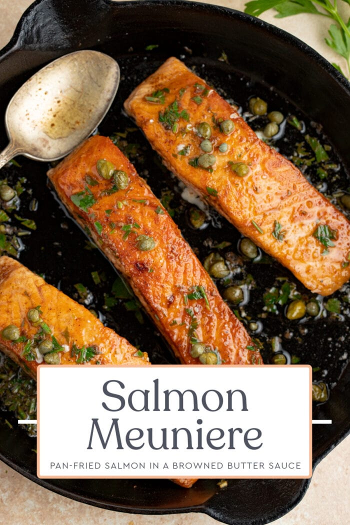 Pin graphic for salmon meuniere