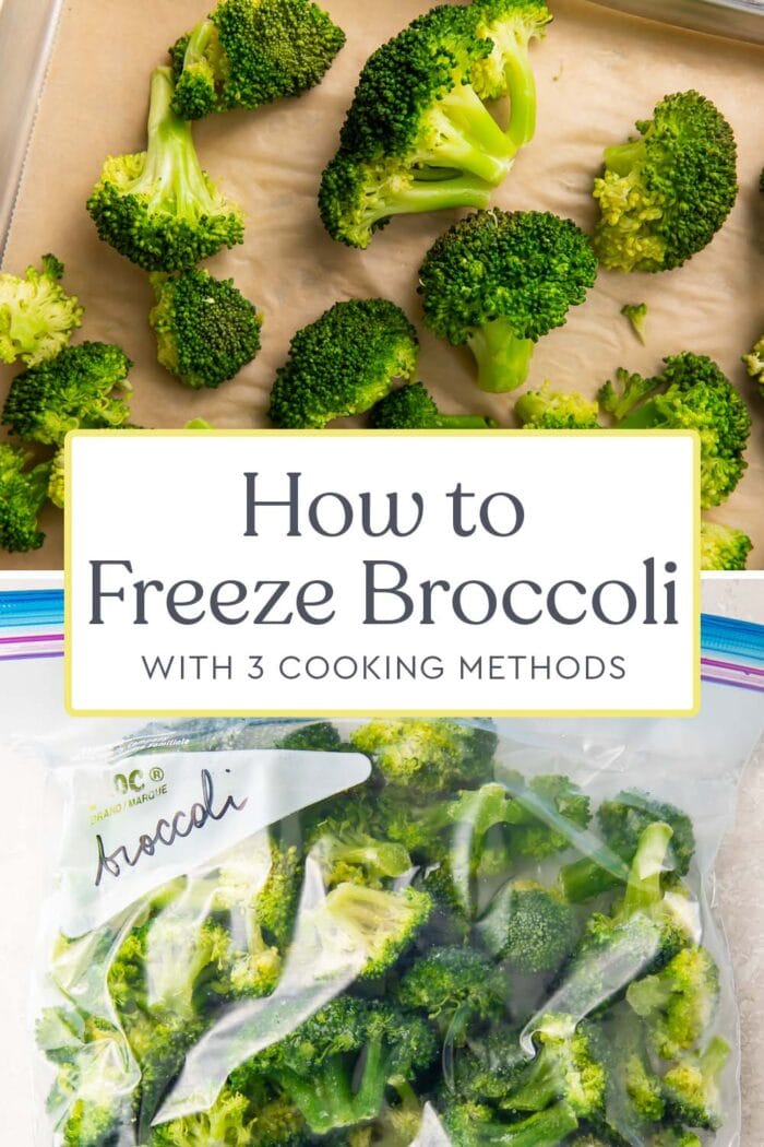 Pin graphic for how to freeze broccoli