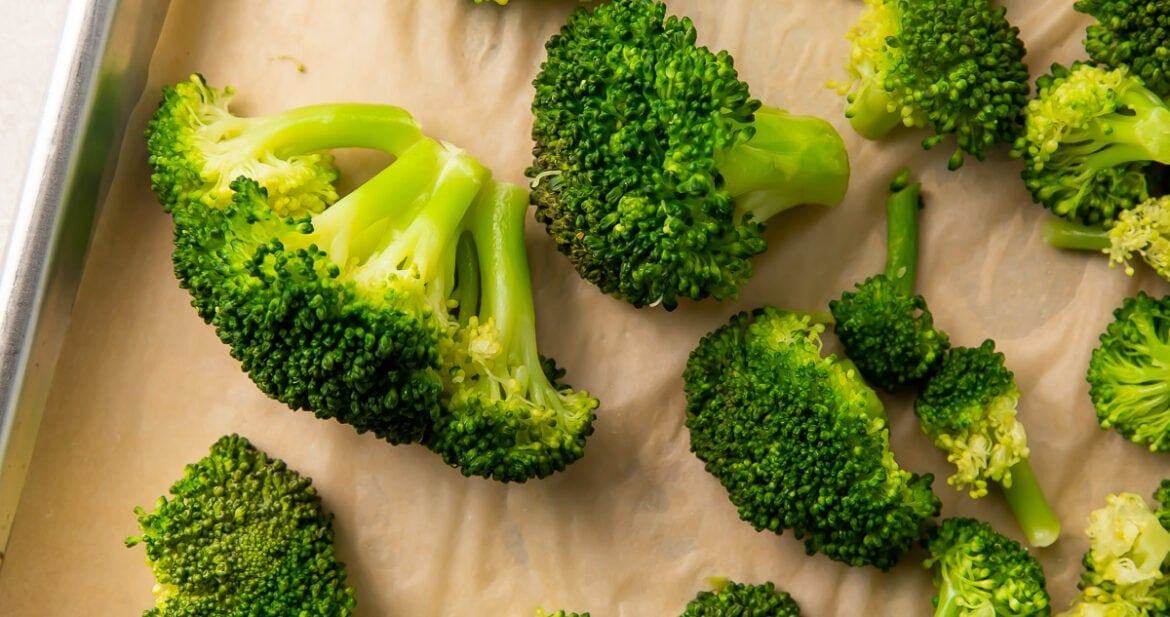 Fresh, cooked, dried broccoli ready to be frozen